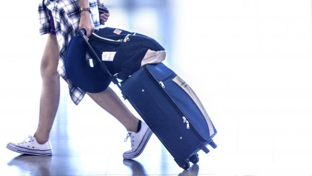 国内・国外旅行保険